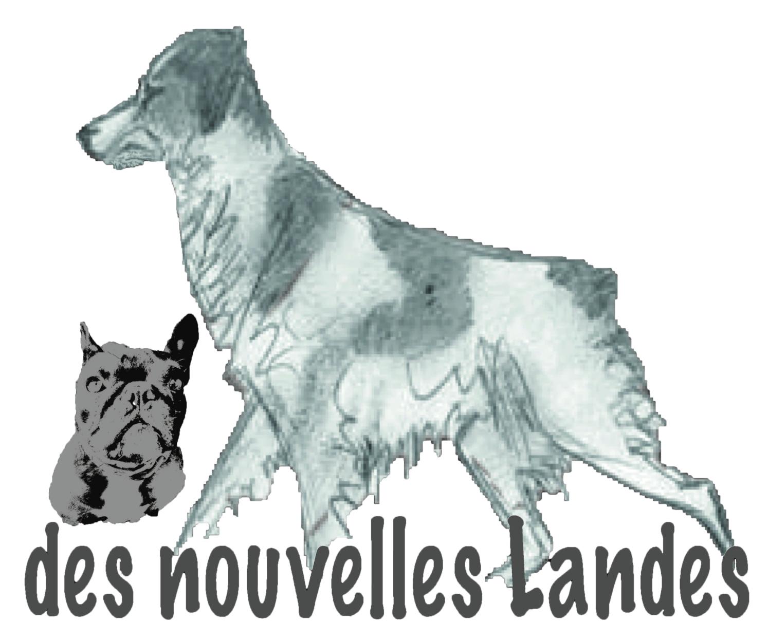 Logo elevage